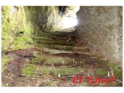 machu picchu - descubren camino inca