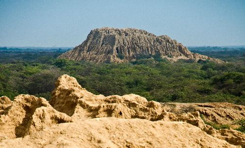 Lugares Turísticos en Perú: El Santuario Histórico Bosque del Pomac